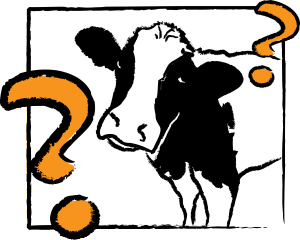what_cow